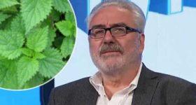 Doktor Branimir NESTOROVIĆ objašnjava moć KOPRIVE u borbi protiv insekata!